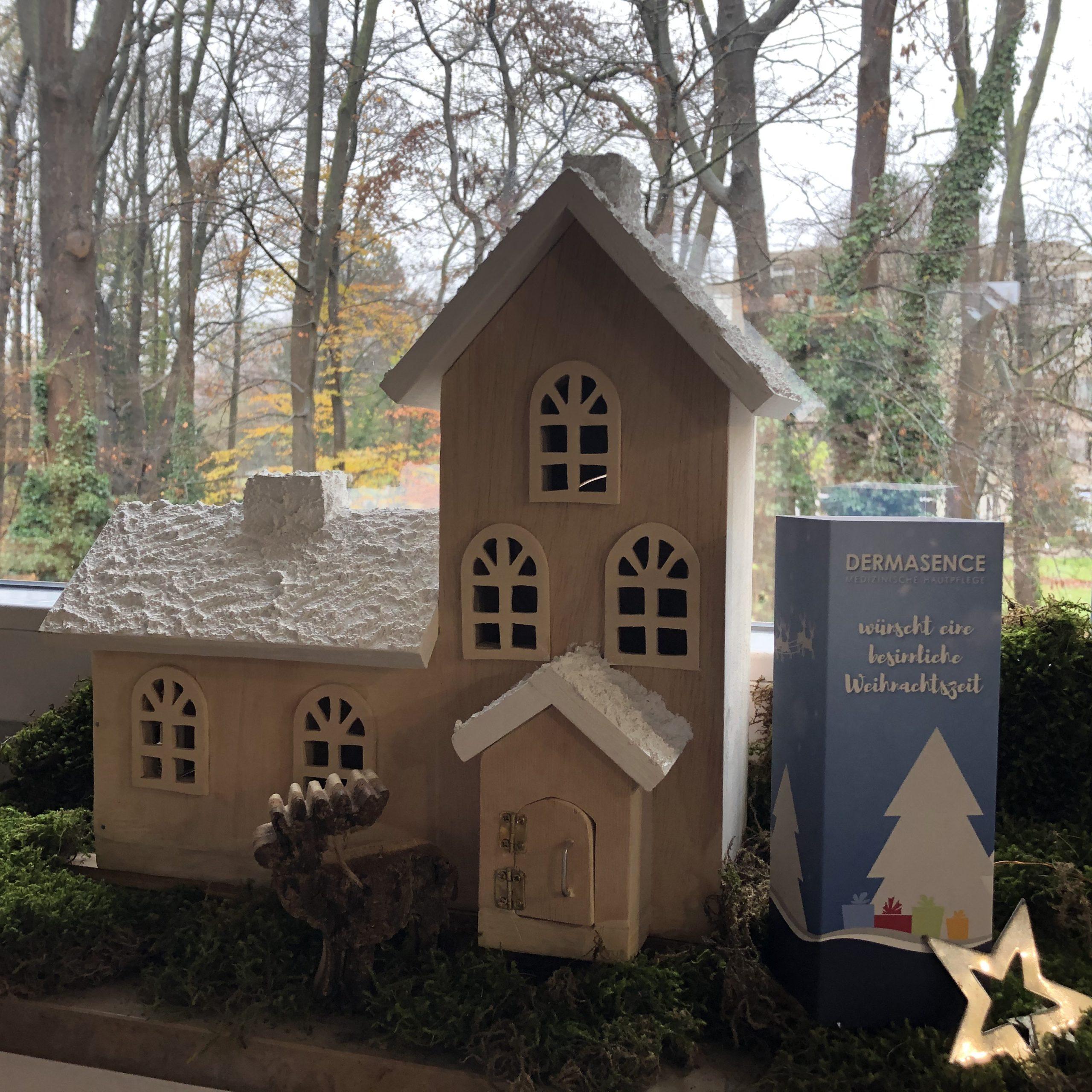 Weihnachten Dermasence Königs-Apotheke Münster